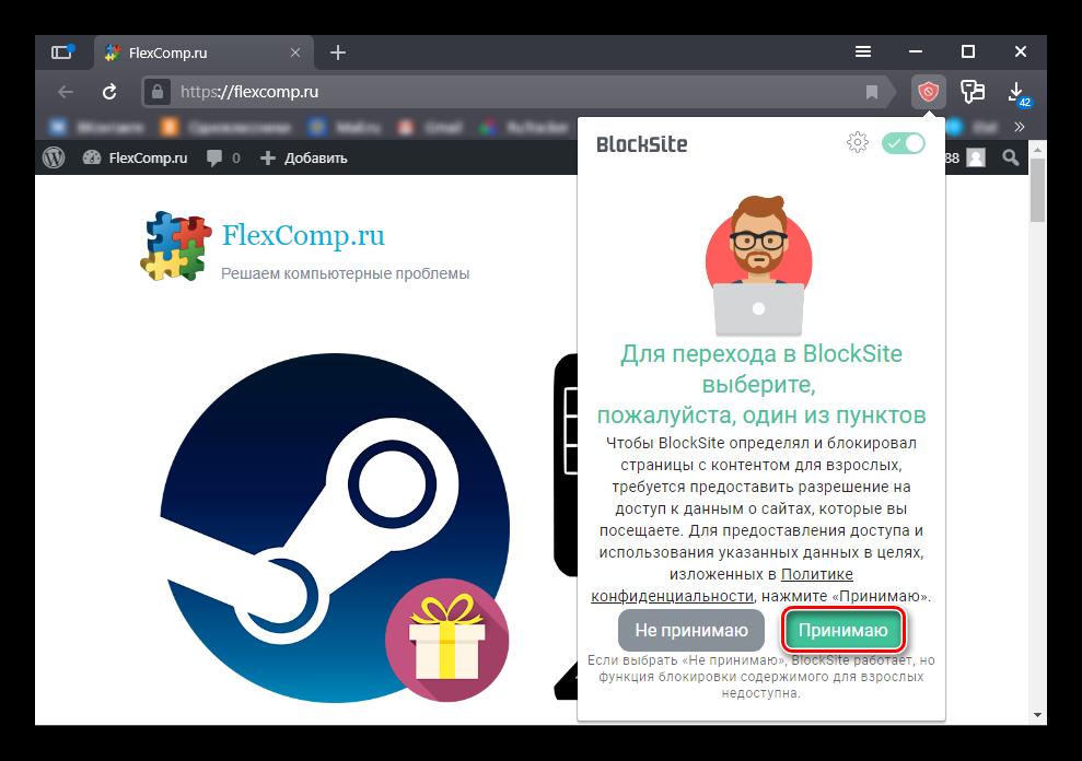 Кнопка принятия соглашения в Block Site