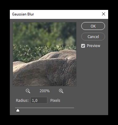 Результат применения фильтра gaussen blur в программе Фотошоп