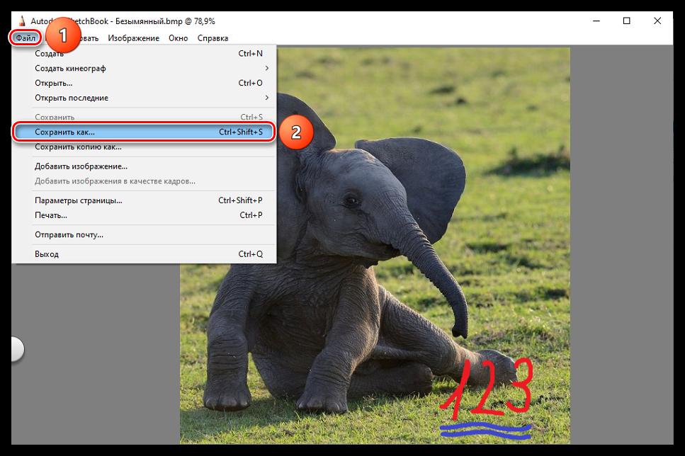 Как-открыть-BMP-файл_040